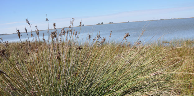 laguna La Salada