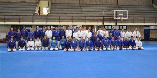 Torneo-artes-marciales