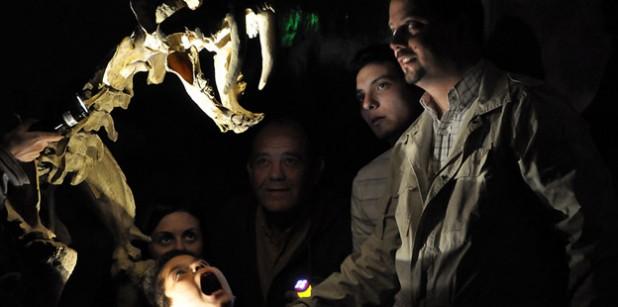 Museo Ciencias Naturales con Linternas