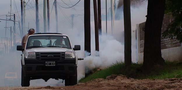 Provincia inicia campaña contra el mosquito