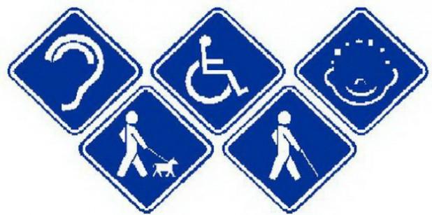 discapacidad web