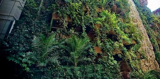 Jornada Sobre Jardines Verticales Y Techos Vivos