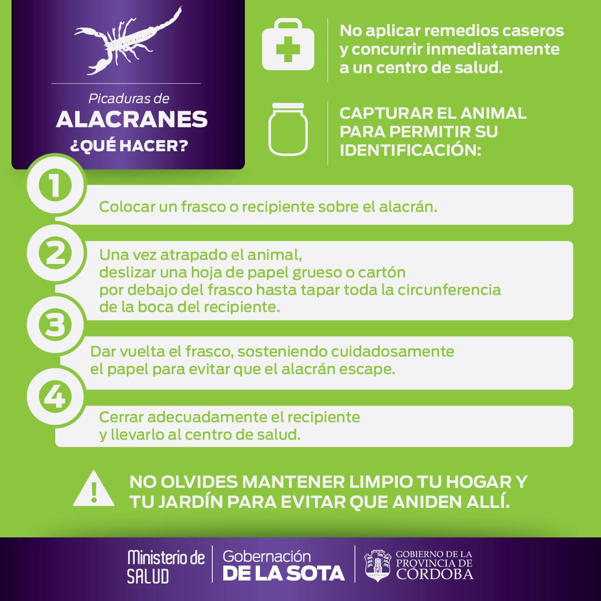 Alacranes2Nuevo-Gob Cba-30Dic-01