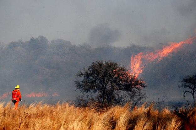 Alerta por riesgo de incendios desde hoy y hasta el fin de semana