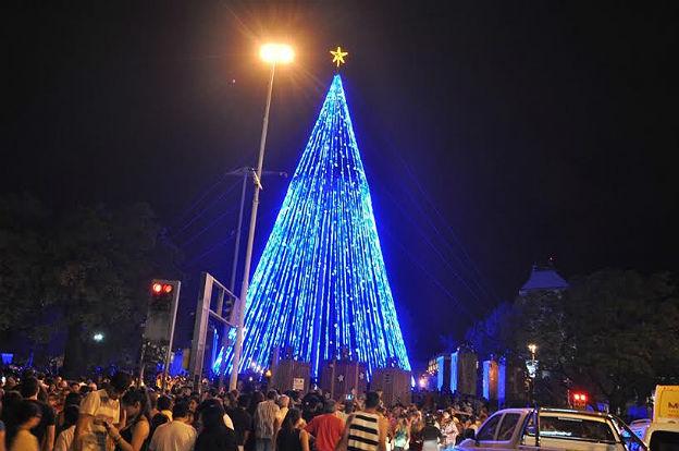 El rbol de navidad m s grande de argentina ya ilumina a for Arboles perennes en argentina
