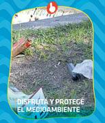 Basura y cuidado del medio ambiente
