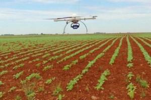 Drones en campo