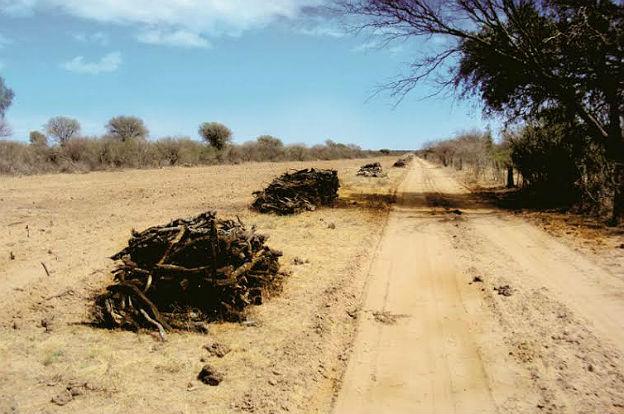 Recomendaciones para prevenir y mitigar incendios - Matachispas para chimeneas ...
