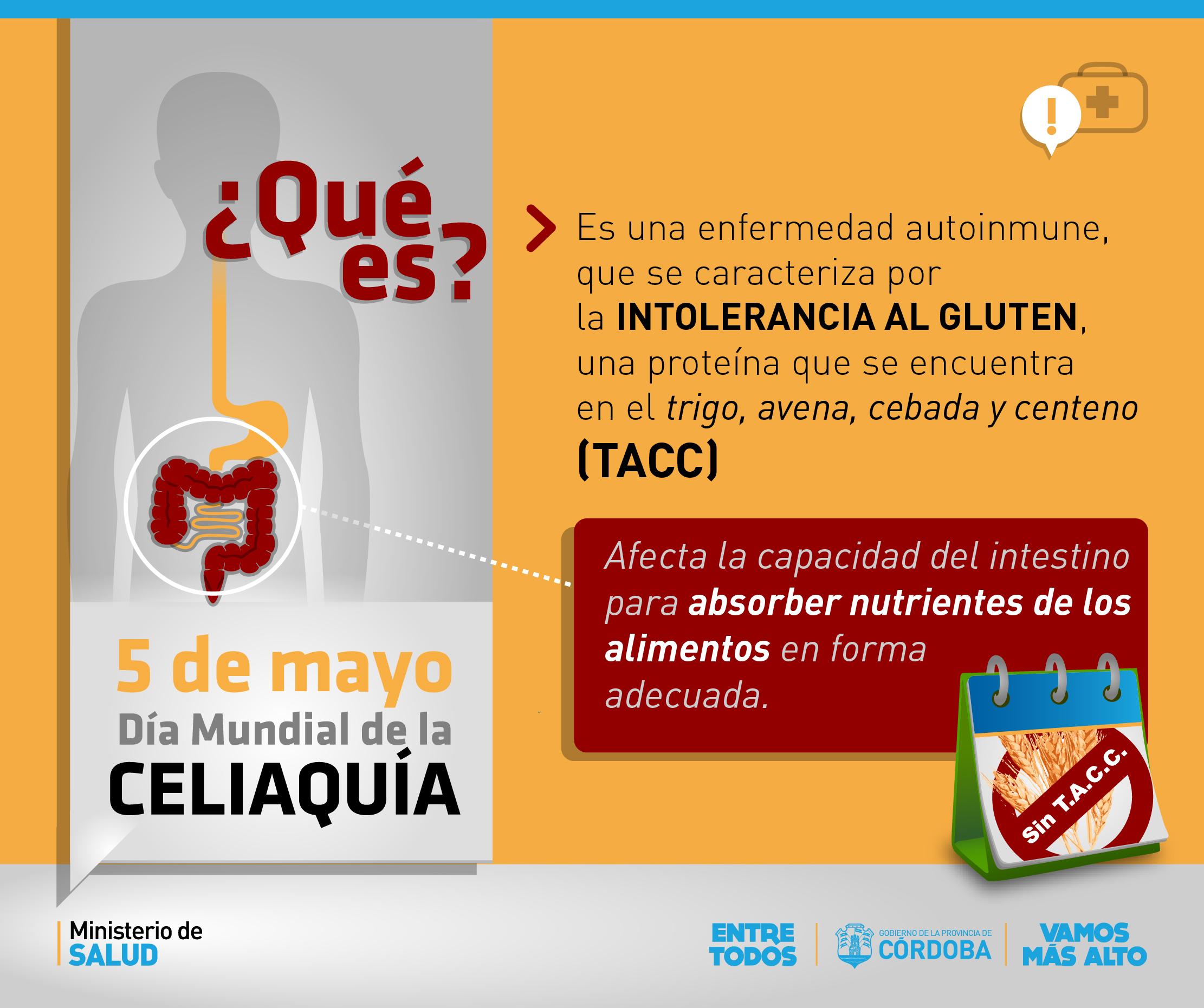 5 de mayo: Hablemos de celiaquía