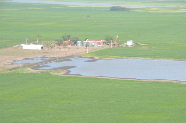 Emergencia Agropecuaria: prorrogan recepción de declaraciones de daños