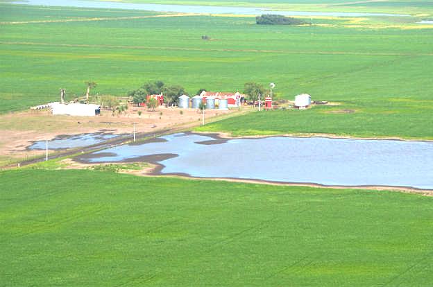 Resultado de imagen de Emergencia Agropecuaria