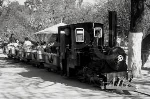 Paseo en el Jardín Zoológico (27-07-1965)