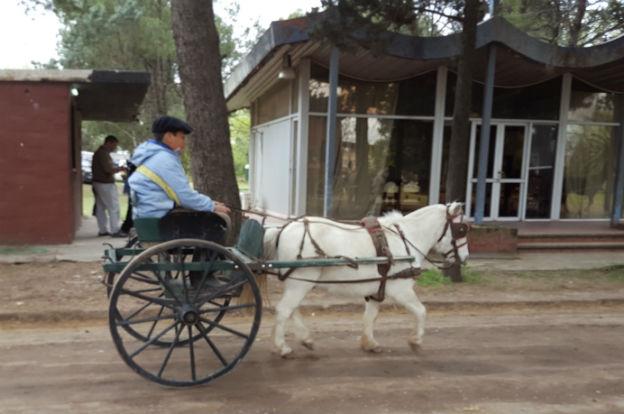 Arrancó la Rural de Córdoba