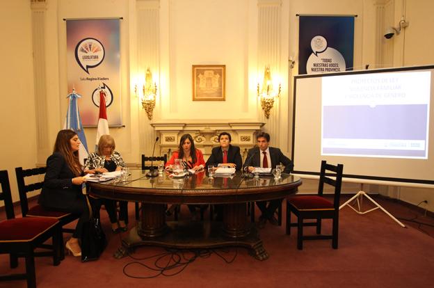 Violencia de Género: Justicia presentó proyectos de ley en la Unicameral