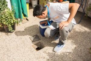 Monitoreo dengue