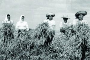 Mujeres trabajadoras rurales