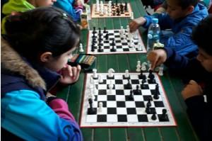 ajedrez educativo1