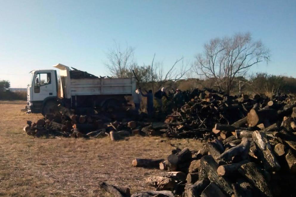 Donación de leña: Policía Ambiental entregó más de 30 toneladas