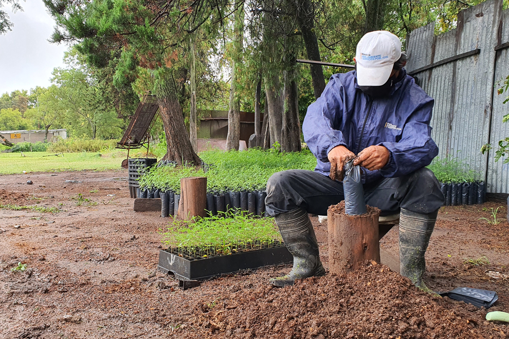 El Plan Agroforestal avanza en la capacitación para la Red de Viveros